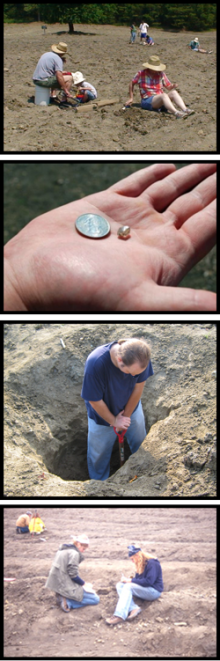 diamond-digging